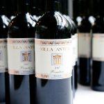 Wein Primitivo